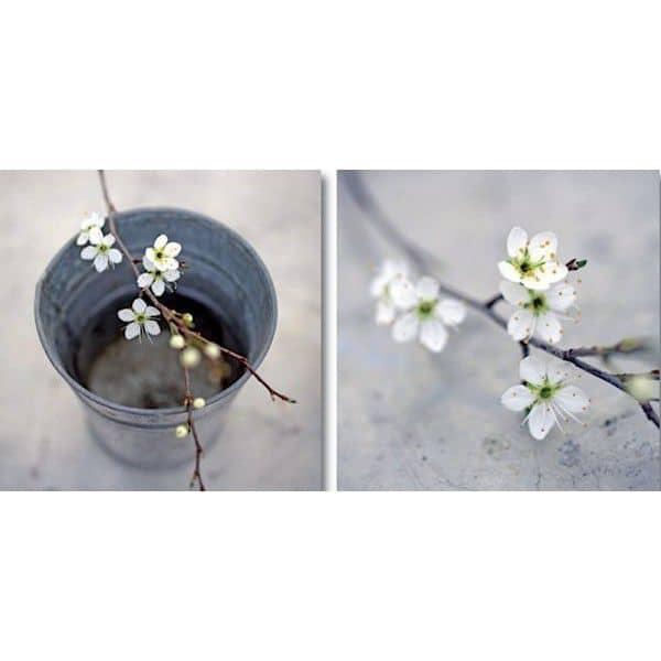 Duo de photographies d'auteurs imprimées sur toile et montées sur châssis - chic, design et déco